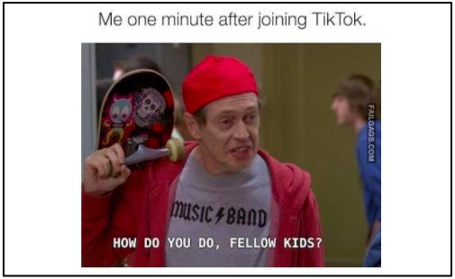 TikTok meme
